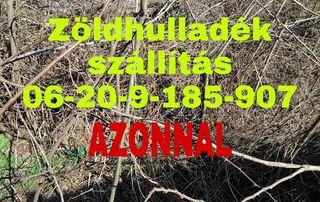 LOMTALANÍTÁS ÉRD 06-20-9185-907 DIÓSD TÖRÖKBÁLINT BUDAÖRS BIATORBÁGY BUDAKESZI PÁTY TELKI NAGYKOVÁCSI SOLYMÁR,ZÖLDHULLADÉK SZÁLLÍTÁS,SITT SZÁLLÍTÁS AZONNAL